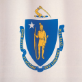 Massachusetts: Taxpayer's products were prewritten computer software