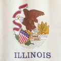 Illinois:  Recently Enacted Bills Include Numerous Tax Changes