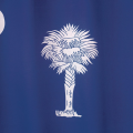South Carolina: Marketplace Operator Responsible for Sales and Use Tax Collection